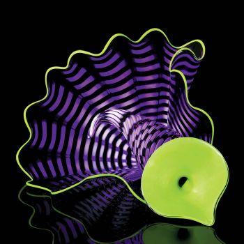 Violet Persian