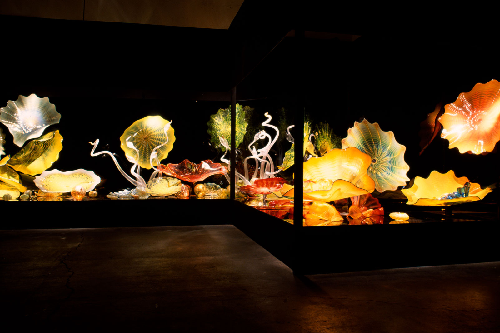 Seaforms | Chihuly